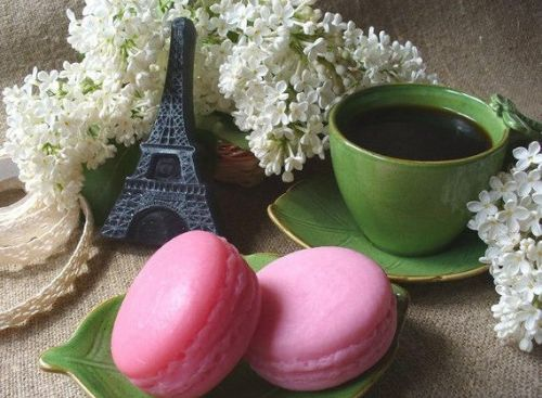 French Macaroon Gift for Guests Wedding Favor