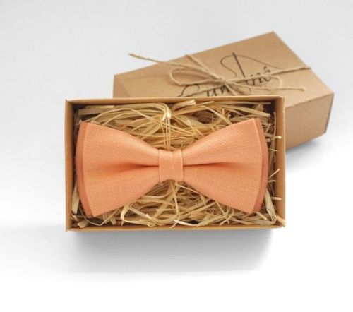 Peach Mens Bowtie Perfection for Groom Weddings