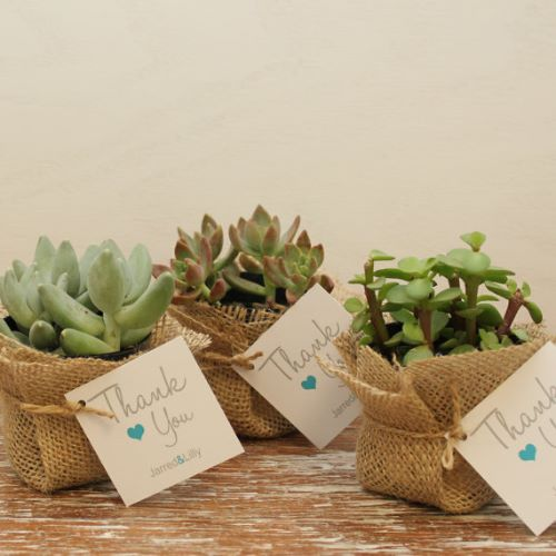 Gift for Guests Wedding Favor